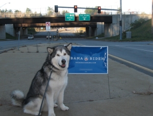 Trav and I found ourselves in Nashua, N.H., not long before the 2012 election.