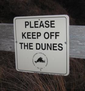 dunes sign