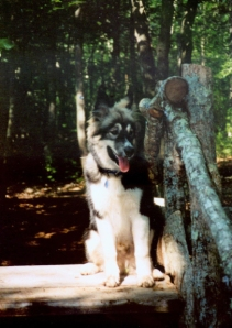Rhodry on the stile, probably 1995.