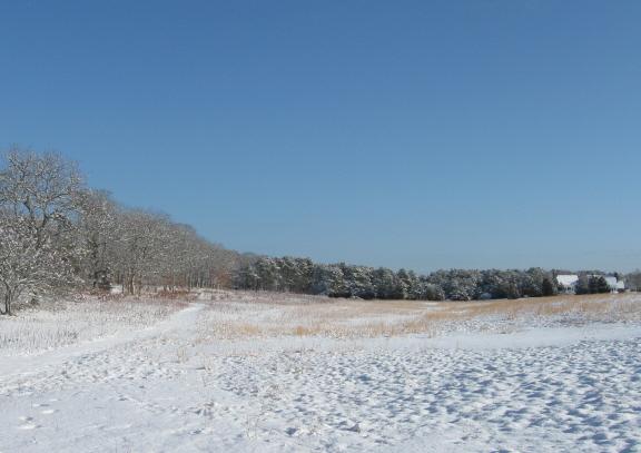 20130214 nats farm