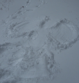 snow angel 1