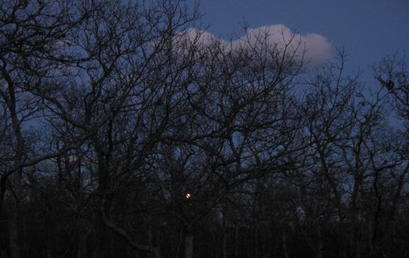 20131216 full moon rise