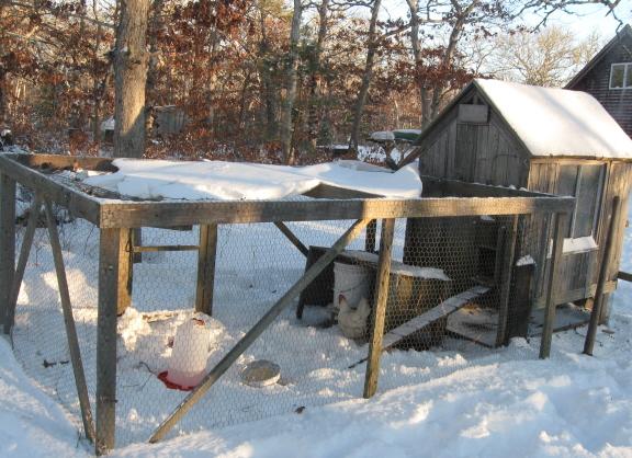 20140104 hen house