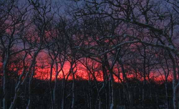 20140218 sunrise 1