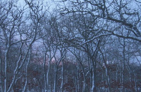 20140218 sunrise 3