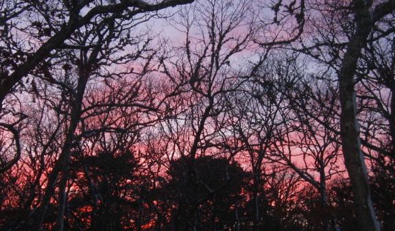20140218 sunset