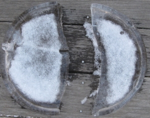 Cracked disk, garnished with snow