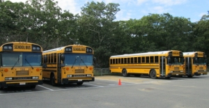 Buses behind the West Tisbury School