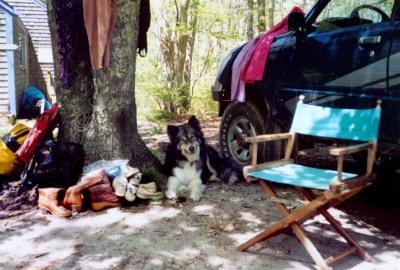 Rhodry at a yard sale, ca. 1999.
